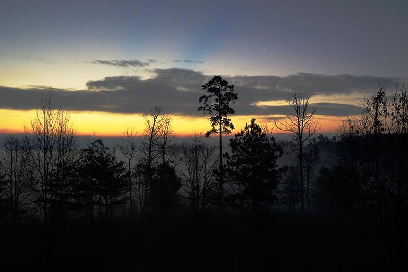 morning_fog_3