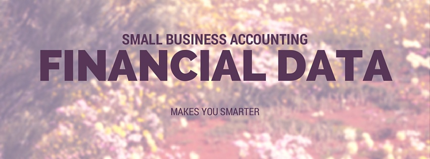 Small Business Accounting: Financial Data Makes You Smarter