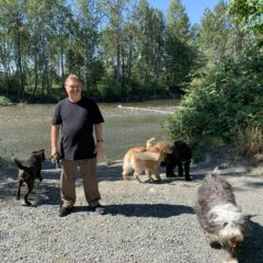 The Diamond Touch Dog Rehabilitation Centre