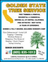 Golden State Tree QP CDG 2019.jpg