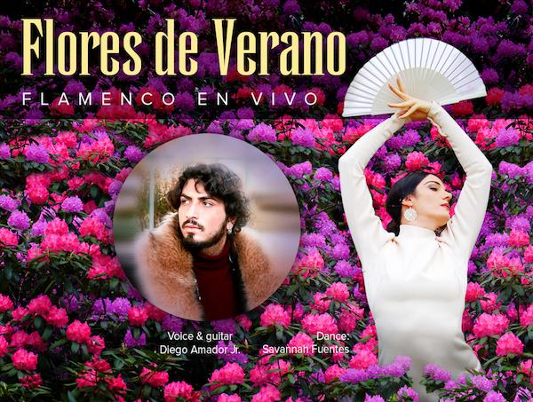 Flamenco in Cambria