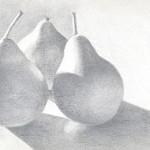Pear Trio - Silverpoint
