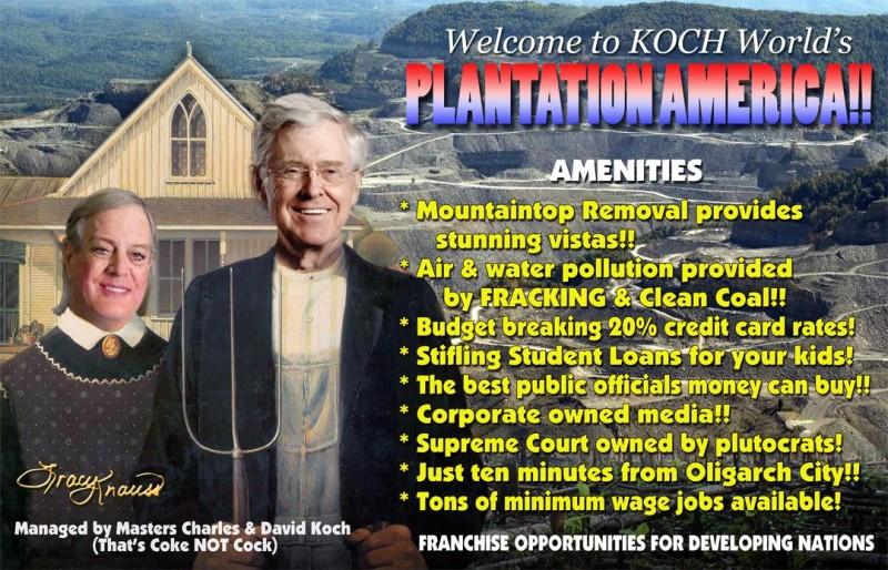 knauss Koch plantation