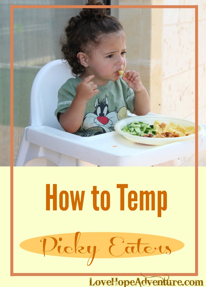 If you have a fussy eater in your life, you'll know how frustrating it can be to prepare something they'll eat, or find a restaurant they'll like. Whether it's your significant other or one of your kids, fussy eaters can be impossible to please. But, with a few simple strategies, you can turn this around and tempt even the most finicky person.