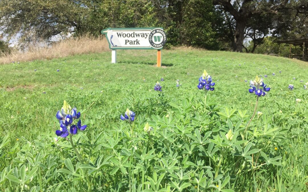 New Trail Section in Woodway Park