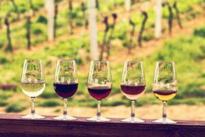 wine tour transportation