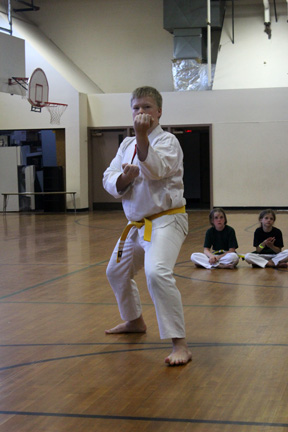 image of teen tae kwon do punch