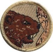 pat6_beaver