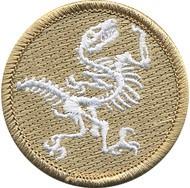 pat8_fossil