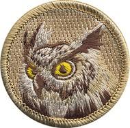 pat9_owl
