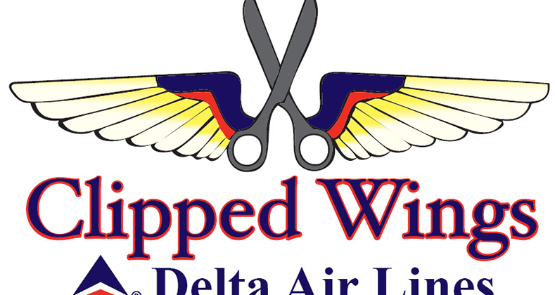 Delta Clipped Wings Cartoon