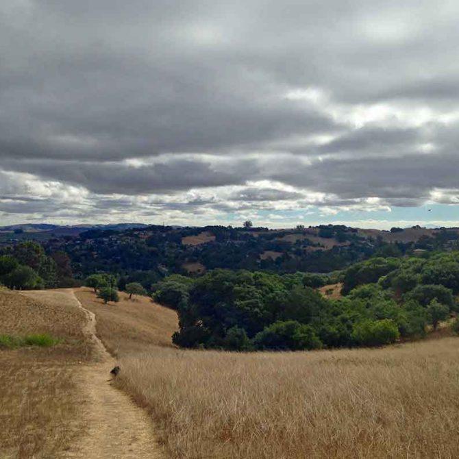 Trail through brown grass