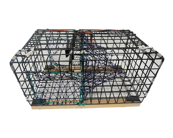 Lobster Trap with Netting