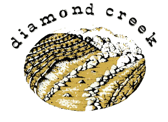 Diamond Creek logo