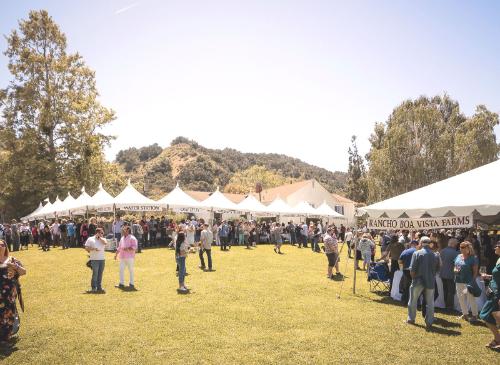 Vintners Festival 2019