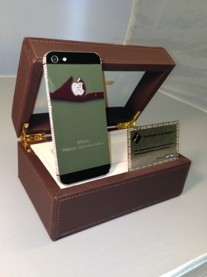 iphone 5 gold conversion kit