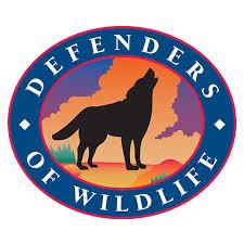 https://secureservercdn.net/198.71.233.33/8pv.37e.myftpupload.com/wp-content/uploads/2019/05/537c67d6-5dbd-47b5-8266-d9f168128919defenders-of-wildlife.jpg