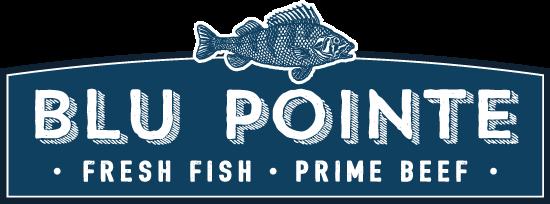 Blu-Pointe-Logo-blue-retina