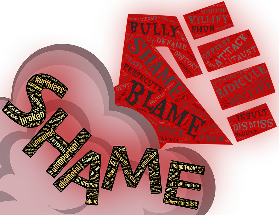 Image of the words shame and blame represent the experience of narcissistic abuse survivors