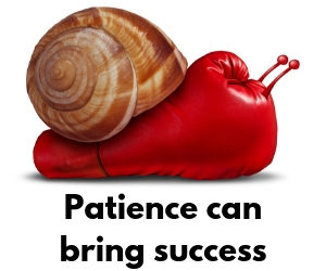 Patience can bring success