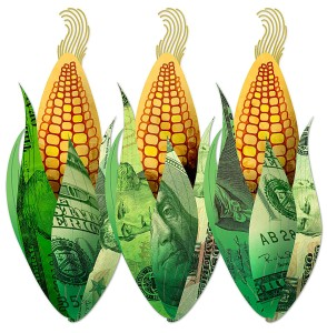 corn and money