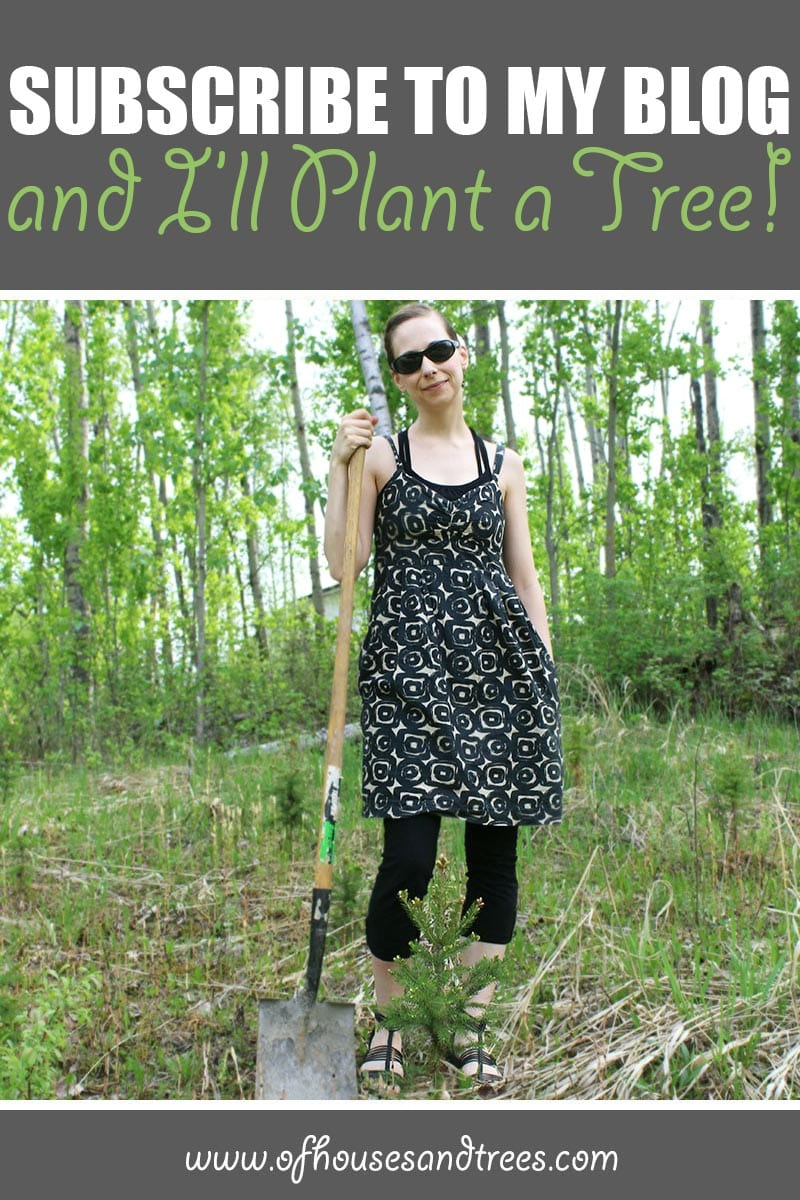 Plant a Tree | Subscribe to my blog and I'll plant a tree! Because as the proverb goes: