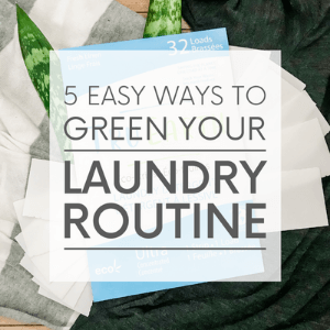 """Laundry, laundry strips and green leaves on the floor with the words """"5 ways ti green your laundry routine."""" Click to visit post."""