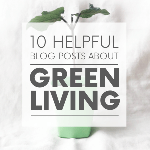 """A small plant in a green cup with the words """"10 helpful blog posts about green living."""" Click to visit post."""