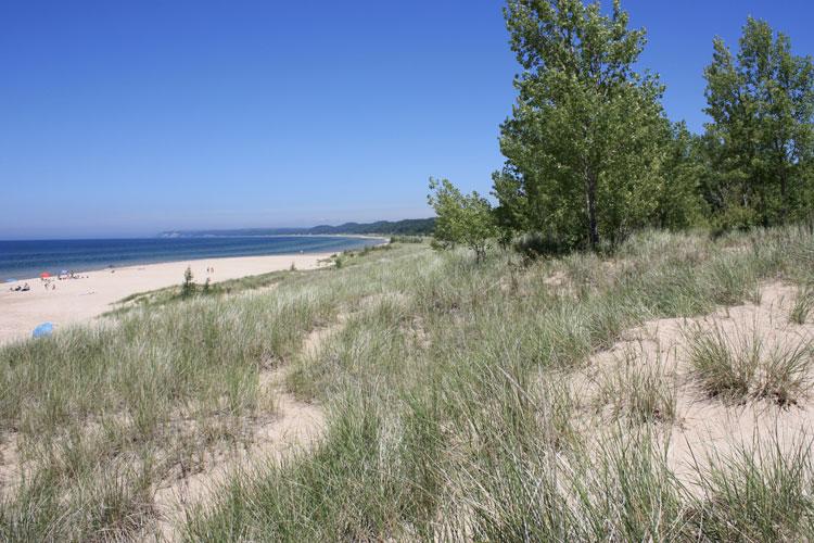 pentwater beach sand dunes and grass