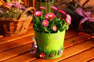 spring-800240_1920