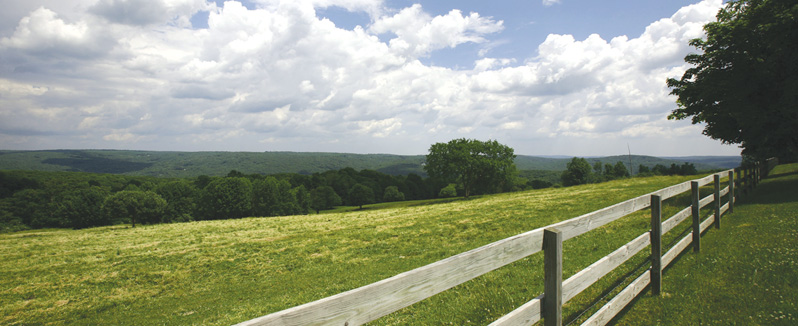 greyledge farm