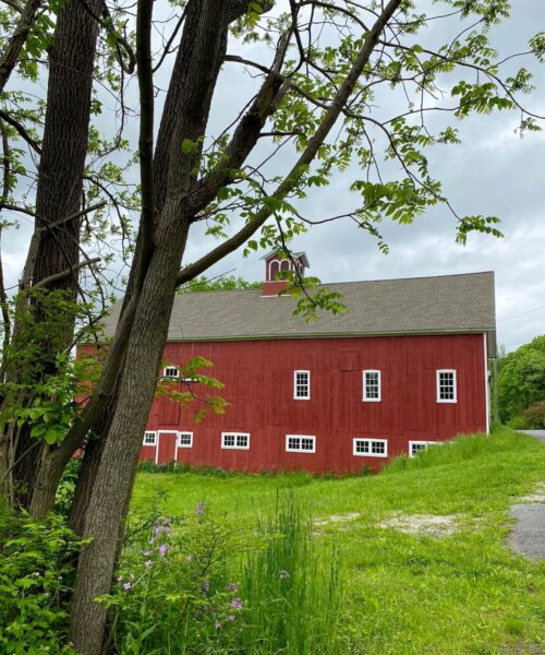 Smyrski Farm Lead