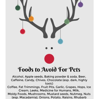 Pets Who Ruined Christmas and Other True Stories