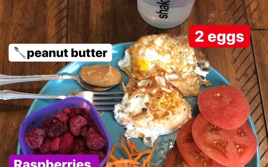 Timed Nutrition Meal Plan