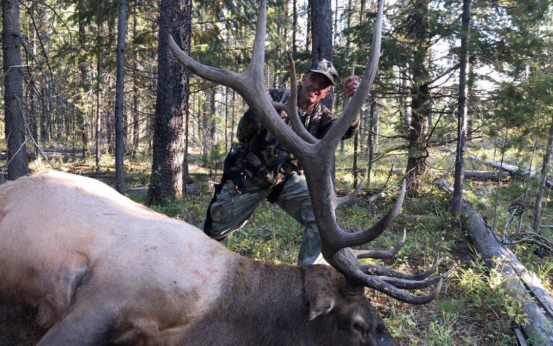 2018 Archery Elk Kill