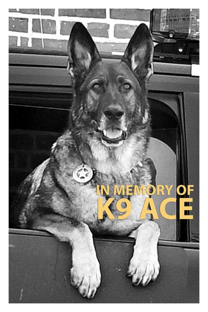 K9 Ace