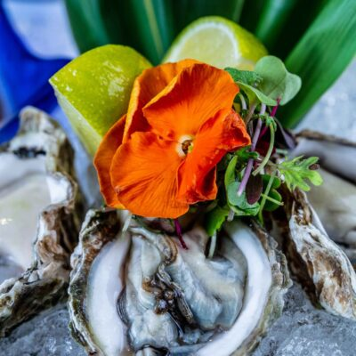 COCO Delray Sushi Lounge & Bar - Oysters