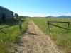 mccall-rail-trail-at-heinrich2007-06-30.jpg