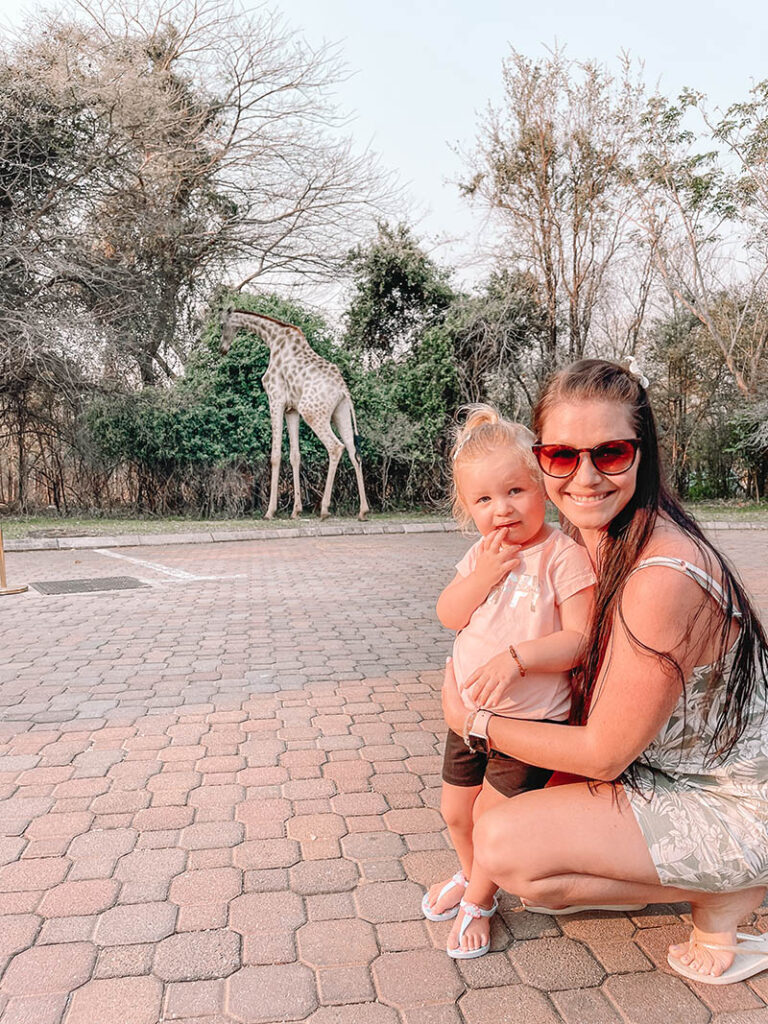 Things to do with a Toddler in Livingstone