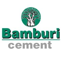 SAP Support at Bamburi
