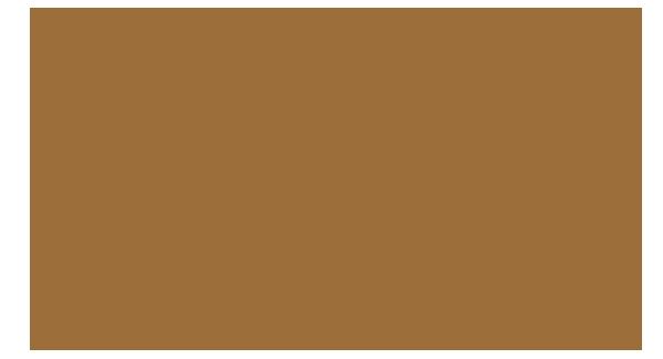 Brazilian Blowout Hair Style