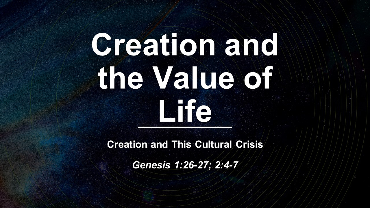 Creation and the Value of Life
