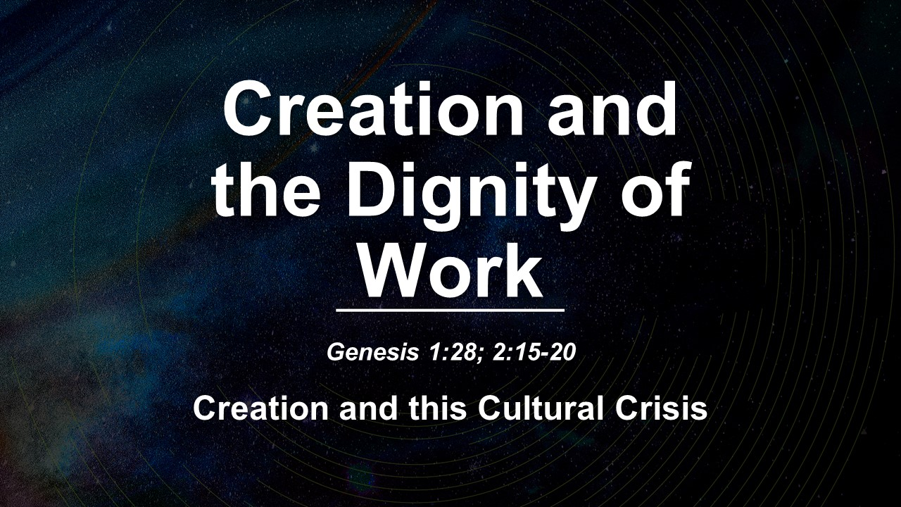 Creation and the Dignity of Work