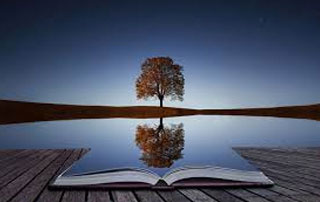 reflection-image-tree-and-book