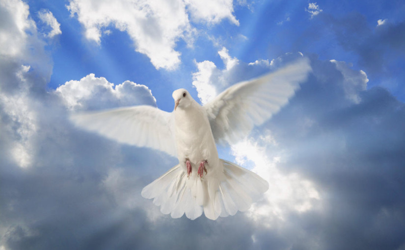 The Holy Spirit In Us :)