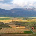 Landscape of Rioja Alavesa