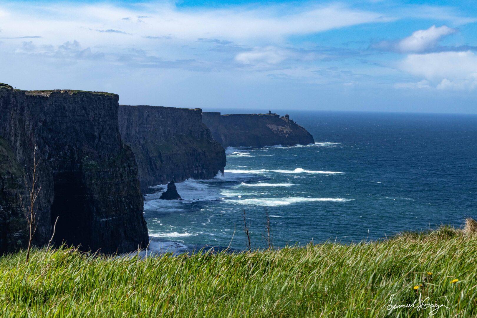 Cliffs of Moher Grass