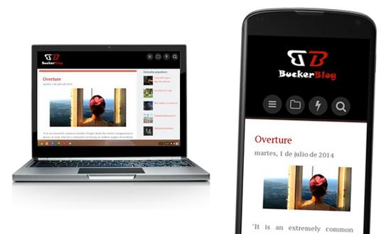 Buckerblog 2014 Blogger