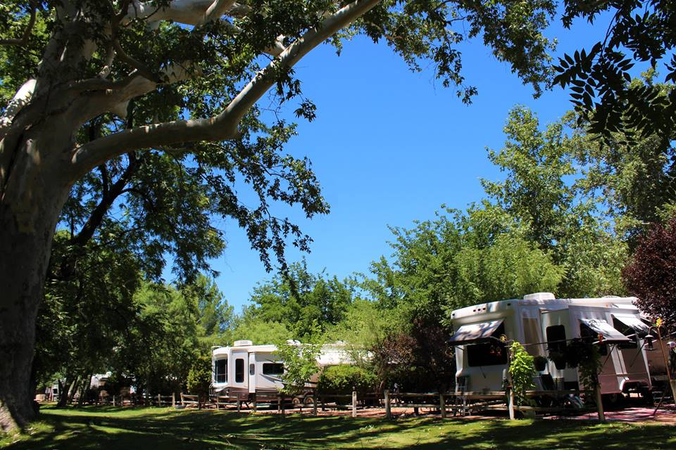 Camp Out in Camp Verde