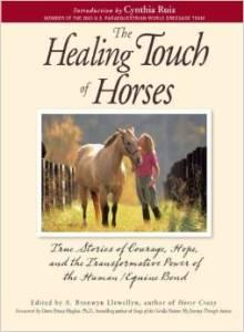 HealingTouchofHorsesLarge